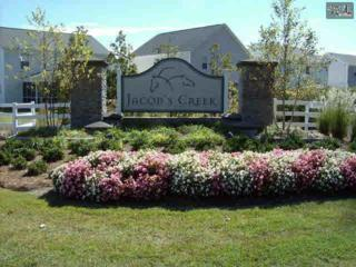 1143  Triple Crown Court  530, Elgin, SC 29045 (MLS #366581) :: Exit Real Estate Consultants