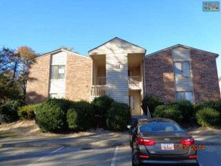 229  Windsor Point Road  5B, Columbia, SC 29223 (MLS #366630) :: Exit Real Estate Consultants