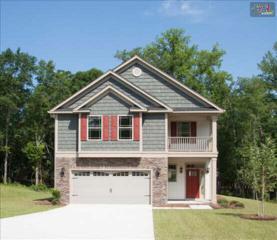 354  Ashburton Lane  166, Lexington, SC 29170 (MLS #366656) :: Exit Real Estate Consultants