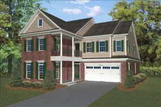 218  Chestnut Wren Road  209, Blythewood, SC 29016 (MLS #366681) :: Exit Real Estate Consultants