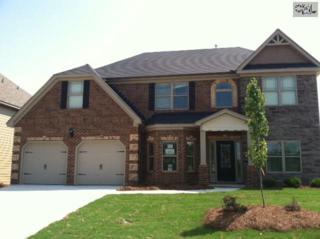309  Meadow Overview Court  33, Lexington, SC 29072 (MLS #366682) :: Exit Real Estate Consultants