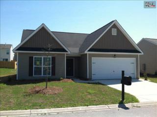 931  Dovefiled Lane  144, Lexington, SC 29073 (MLS #366683) :: Exit Real Estate Consultants