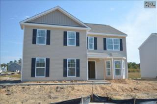 603  Dovefield Lane  148, Lexington, SC 29073 (MLS #366685) :: Exit Real Estate Consultants