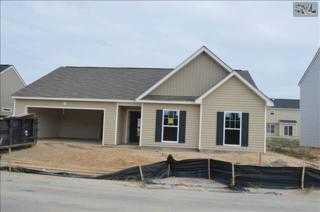 617  Deertrack Run  149, Lexington, SC 29073 (MLS #366688) :: Exit Real Estate Consultants