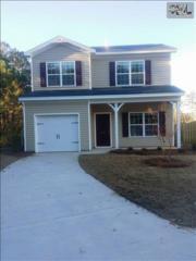 256  Ridge Terrace 30 Lane  , Lexington, SC 29073 (MLS #366689) :: Exit Real Estate Consultants
