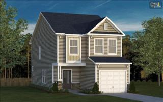423  Lanyard Lane  57, Chapin, SC 29036 (MLS #366695) :: Exit Real Estate Consultants
