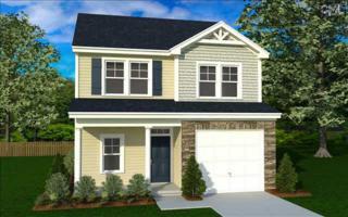 145  Lanyard Lane  59, Chapin, SC 29036 (MLS #366696) :: Exit Real Estate Consultants