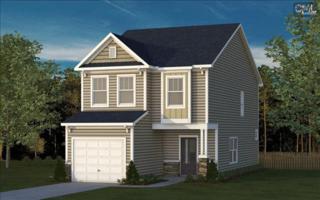 105  Misty Dew Lane  60, Lexington, SC 29072 (MLS #366697) :: Exit Real Estate Consultants