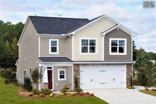 109  Misty Dew Lane  61, Lexington, SC 29072 (MLS #366698) :: Exit Real Estate Consultants
