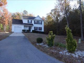129  Winesett Road  , Irmo, SC 29063 (MLS #366703) :: Exit Real Estate Consultants