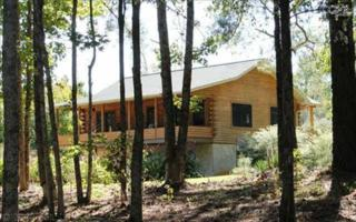 532  Paradise Drive  , Blair, SC 29015 (MLS #366704) :: Century 21 | J. Bolos