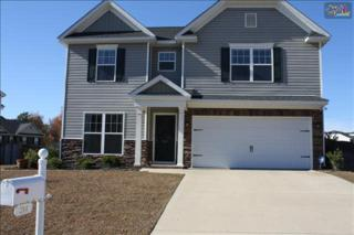 244  Peach Hill Drive  , Lexington, SC 29072 (MLS #366759) :: Exit Real Estate Consultants