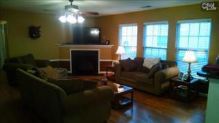 280  Richmond Farm Circle  , Lexington, SC 29072 (MLS #366763) :: Exit Real Estate Consultants