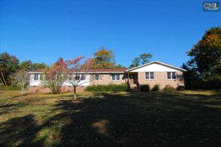 1159  Libby Arial Circle  , Chapin, SC 29036 (MLS #366791) :: Exit Real Estate Consultants