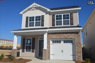 168  Megan Lane  , Lexington, SC 29073 (MLS #366829) :: Exit Real Estate Consultants