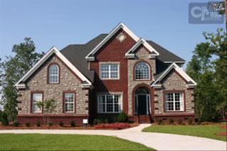 201  Longcreek Plantation Drive  , Blythewood, SC 29016 (MLS #366908) :: Exit Real Estate Consultants