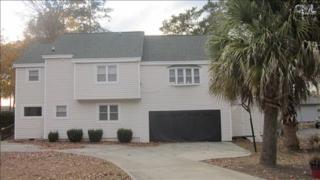 482  Smallwood Drive  , Chapin, SC 29036 (MLS #367093) :: Exit Real Estate Consultants