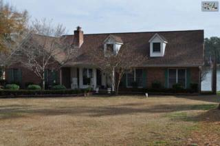 152  Pine Point Drive  , Lexington, SC 29072 (MLS #367299) :: Exit Real Estate Consultants