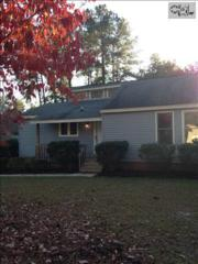 164  Darian Drive  , Lexington, SC 29073 (MLS #367340) :: Exit Real Estate Consultants