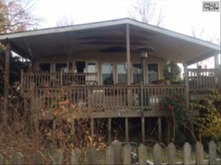 833  Silverpoint Road  , Chapin, SC 29036 (MLS #367363) :: Exit Real Estate Consultants
