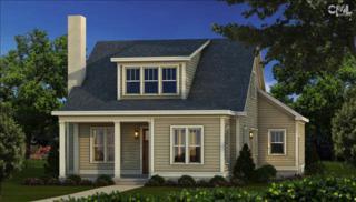 127  Downstream Way  , Lexington, SC 29207 (MLS #367446) :: Exit Real Estate Consultants