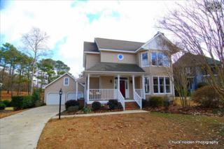 133  Wells Point Drive  , Irmo, SC 29063 (MLS #367496) :: Coldwell Banker United, REALTORS