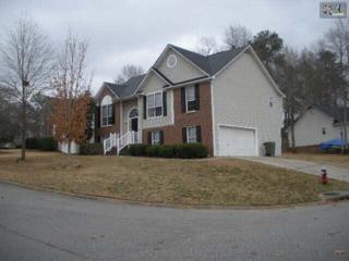 25  Elcock Circle  , Irmo, SC 29063 (MLS #367546) :: Exit Real Estate Consultants