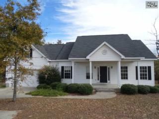 1979  Spring Hill Road  , Gilbert, SC 29054 (MLS #367617) :: Exit Real Estate Consultants