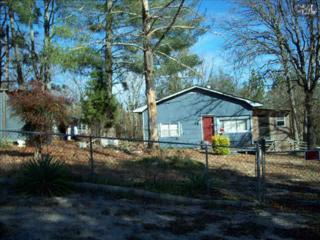 509  Manor Drive  , Gaston, SC 29053 (MLS #367686) :: Exit Real Estate Consultants