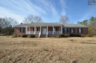 1060  Mount Vernon Church Road  , Chapin, SC 29036 (MLS #367730) :: Exit Real Estate Consultants