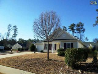 201  Aderley Oak Drive  , Irmo, SC 29063 (MLS #367772) :: Exit Real Estate Consultants