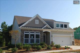808  Leyland Cypress Court  229, Blythewood, SC 29016 (MLS #367804) :: Exit Real Estate Consultants