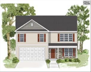 219  Bantam Place  248, Lexington, SC 29072 (MLS #367820) :: Exit Real Estate Consultants