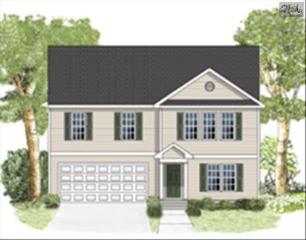 215  Bantam Place  249, Lexington, SC 29072 (MLS #367822) :: Exit Real Estate Consultants