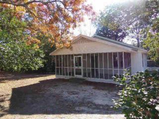 221  Meadowfield Road  , Gaston, SC 29053 (MLS #367829) :: Exit Real Estate Consultants