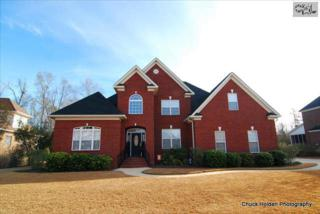 325  Anchor Bend Drive  , Chapin, SC 29036 (MLS #367834) :: Exit Real Estate Consultants