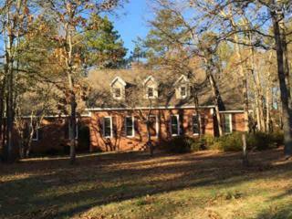 128  Walter Hutto Court  , Lexington, SC 29072 (MLS #367837) :: Exit Real Estate Consultants