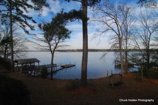 2157  Amicks Ferry Road  , Chapin, SC 29036 (MLS #367877) :: Exit Real Estate Consultants