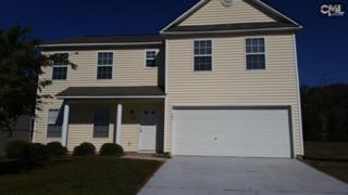 348  Eagle Pointe Drive  , Chapin, SC 29036 (MLS #367880) :: Exit Real Estate Consultants
