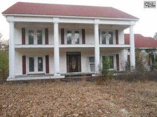 445  Thor Road  , Pelion, SC 29123 (MLS #367881) :: Exit Real Estate Consultants