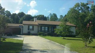934  Jeffers Road  , Elgin, SC 29045 (MLS #367957) :: Exit Real Estate Consultants