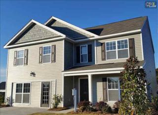 919  Dovefield Run  141, Lexington, SC 29073 (MLS #367978) :: Exit Real Estate Consultants