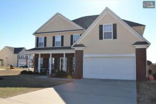 526  Vineyards Crossing Drive  , Columbia, SC 29229 (MLS #367980) :: Exit Real Estate Consultants