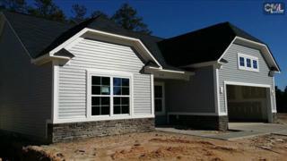 524  Colony Lakes Drive  92, Lexington, SC 29073 (MLS #368003) :: Exit Real Estate Consultants