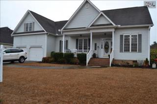 340  Annapolis Road  , Lexington, SC 29072 (MLS #368458) :: Exit Real Estate Consultants
