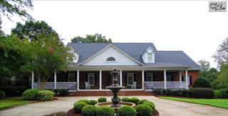 1244  Steeple Ridge Road  , Irmo, SC 29063 (MLS #368484) :: Exit Real Estate Consultants