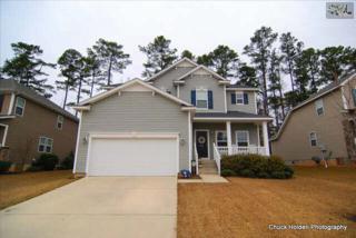 404  Plymouth Pass Drive  , Lexington, SC 29072 (MLS #368678) :: Exit Real Estate Consultants