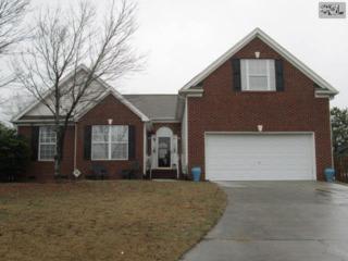 152  Tannock Court  , Lexington, SC 29072 (MLS #369123) :: Exit Real Estate Consultants