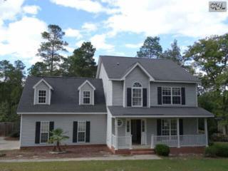 137  Tar Box Trail  , Lexington, SC 29073 (MLS #369187) :: Exit Real Estate Consultants