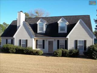 102  Saddle Horn Way  , Lexington, SC 29073 (MLS #369298) :: Exit Real Estate Consultants